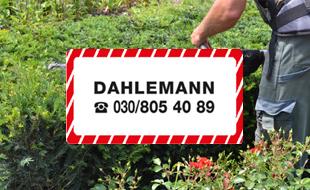 Dahlemann