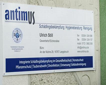 Bild 1 antimus Sch�dlingsbek�mpfung Hygieneberatung Reinigung in Leegebruch bei Berlin