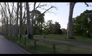 Brodmann - Garten- und Landschaftsbau